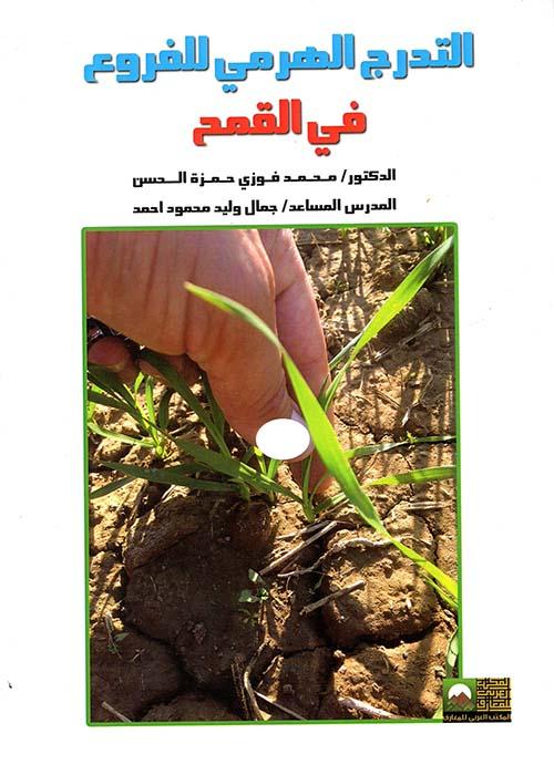 التدرج الهرمي للفروع في القمح