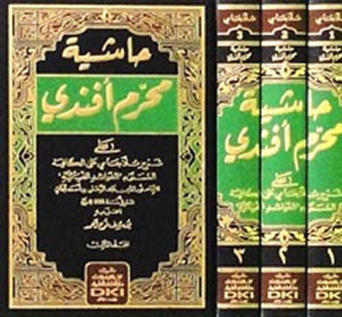 حاشية محرم أفندي على شرح ملا جامي على الكافية المسمى (الفوائد الضيائية) - (شموا - لونان)