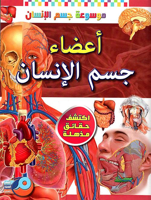 أعضاء جسم الإنسان