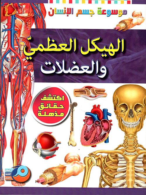 الهيكل العظمي والعضلات